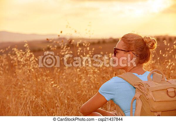 akker, het genieten van, tarwe, ondergaande zon  - csp21437844