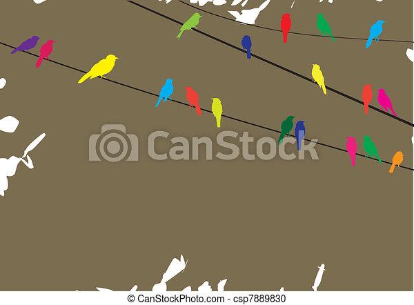 alambre, aves - csp7889830