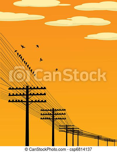 alambre, aves - csp6814137
