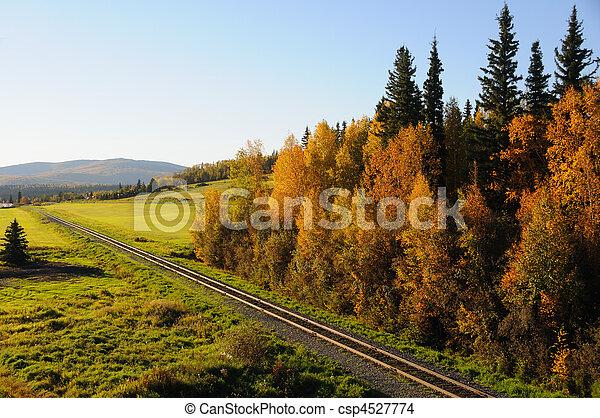 Alaska Railroad in the Fall - csp4527774