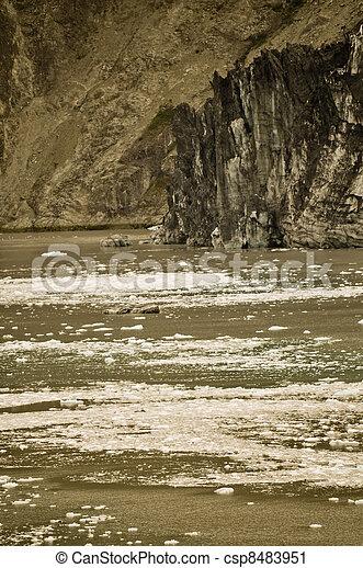 Alaskan Glacier and water - csp8483951