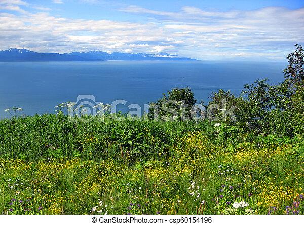 Alaskan Landscape and Cook Inlet - csp60154196