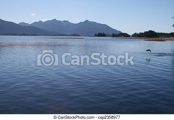 Alaskan Landscape with Jumping Sockeye Salmon - csp2358977