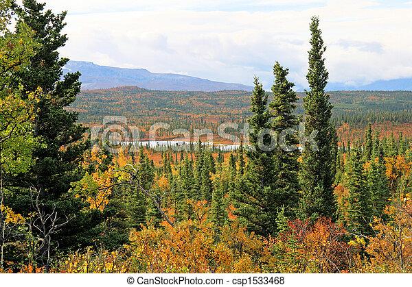Alaskan Vista - csp1533468