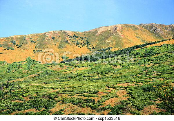 Alaskan Vista - csp1533516