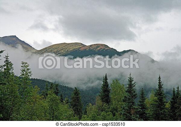 Alaskan Vista - csp1533510