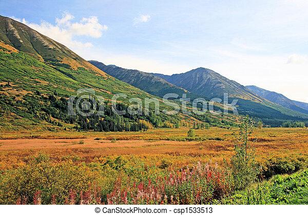Alaskan Vista - csp1533513