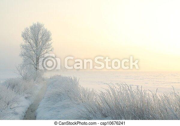 alba, paesaggio inverno - csp10676241