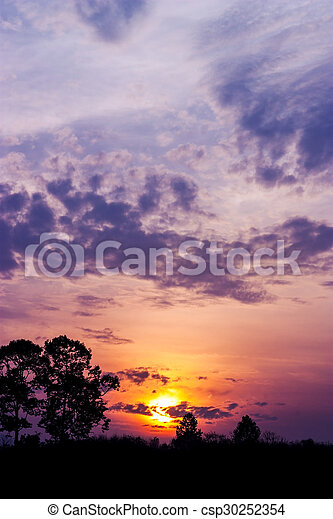 albero, silhouette - csp30252354