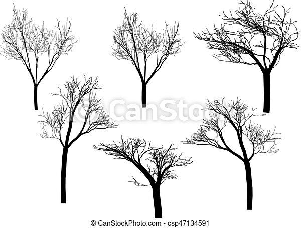 albero, silhouette - csp47134591