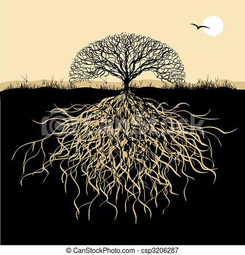 albero, silhouette, radici - csp3206287