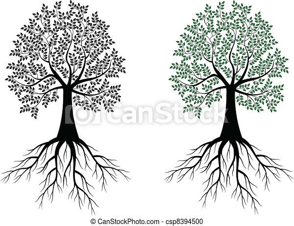 albero, silhouette - csp8394500