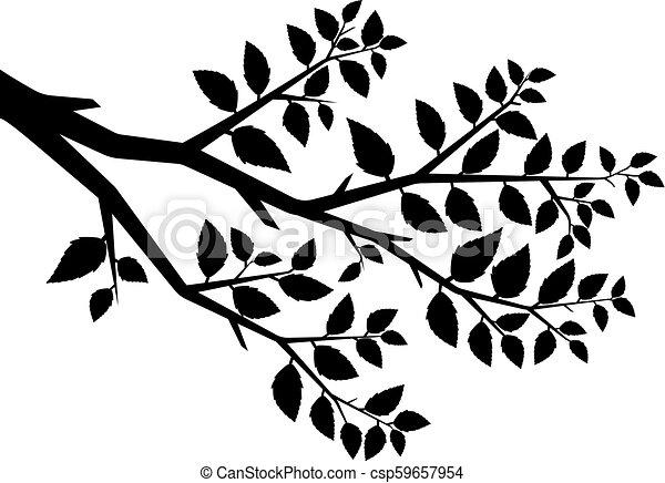 albero, vettore, silhouette, ramo - csp59657954