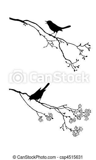 albero, vettore, silhouette, uccello, ramo - csp4515631