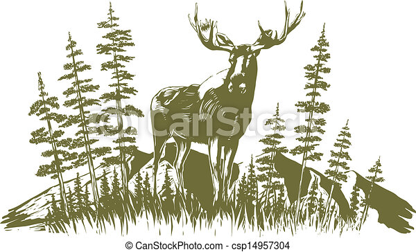 alces, desenho, woodcut - csp14957304