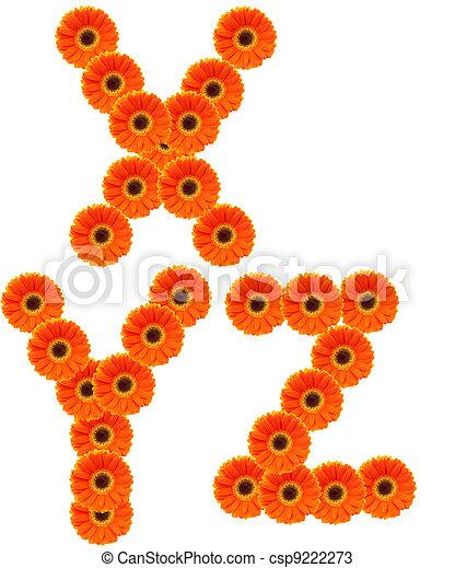alfabeto, flor - csp9222273