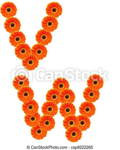alfabeto, flor - csp9222265