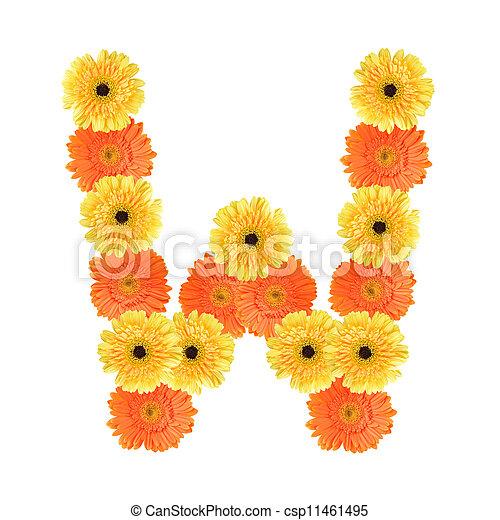 alfabeto, flor, w, criado - csp11461495
