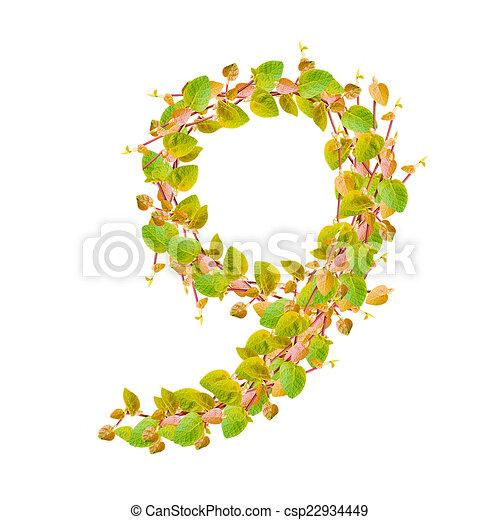 Alfabeto, hojas, verde, 9, número.