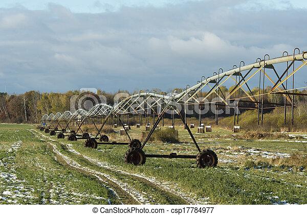 Alfalfa Field - csp17784977