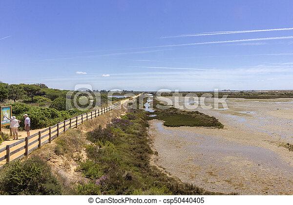 Algarve QDL landscape at Ria Formosa wetlands reserve, southern Portugal. - csp50440405