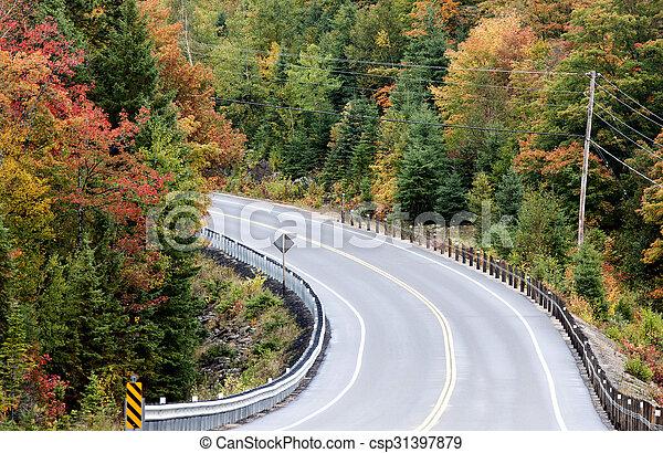 Algonquin Park Muskoka Ontario Road - csp31397879