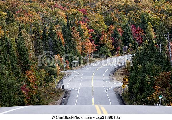 Algonquin Park Muskoka Ontario Road - csp31398165