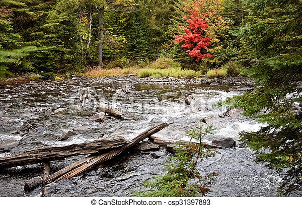 Algonquin Park Muskoka Ontario - csp31397893