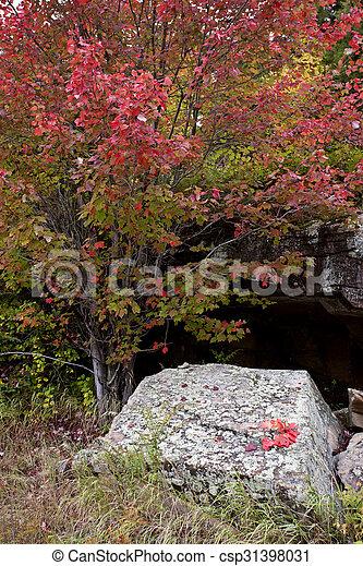 Algonquin Park Muskoka Ontario - csp31398031