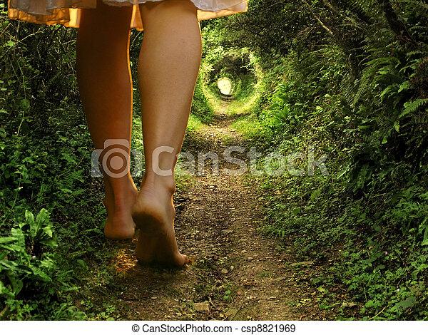 Alice in wonderland - csp8821969