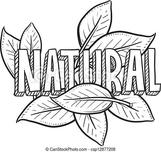 alimento, esboço, natural - csp12877208