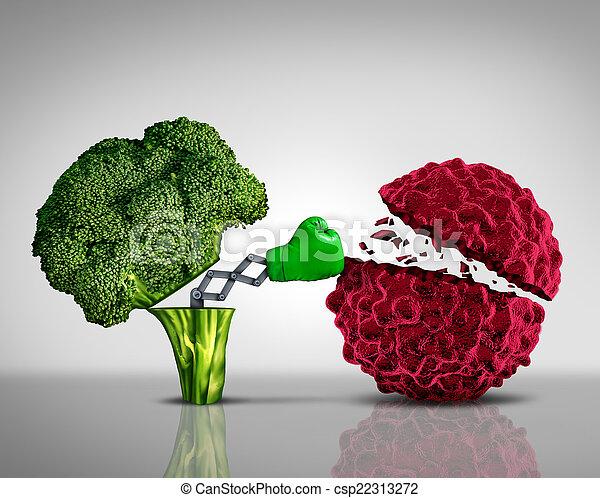 Comida saludable - csp22313272