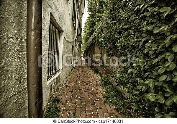 Alley in Charleston, SC - csp17146831
