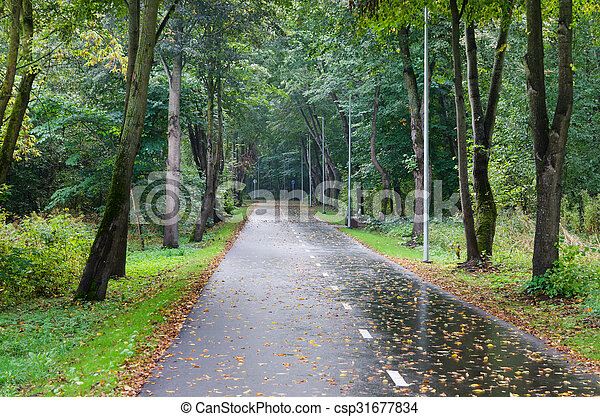 Alley with fallen leaves in autumn park - csp31677834
