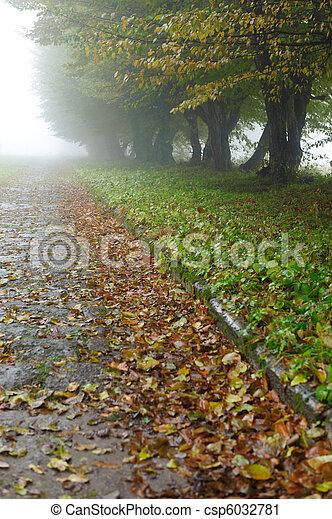 alleyway in foggy park - csp6032781