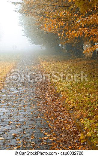 alleyway in foggy park - csp6032728