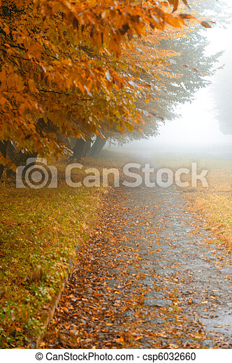 alleyway in foggy park - csp6032660