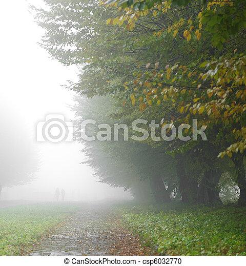 alleyway in foggy park - csp6032770