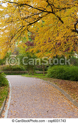 alleyway with paved road to autumn park - csp6031743