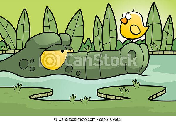 Alligator Swamp - csp5169603