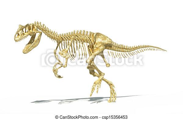 Allosaurus skeleton photo-realistic, scientifically correct. - csp15356453