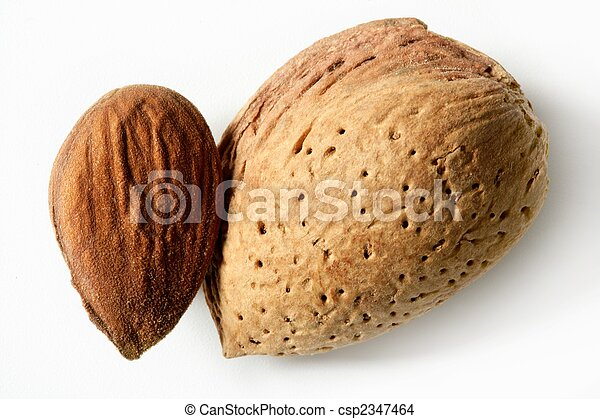 Almond macro image over white background - csp2347464