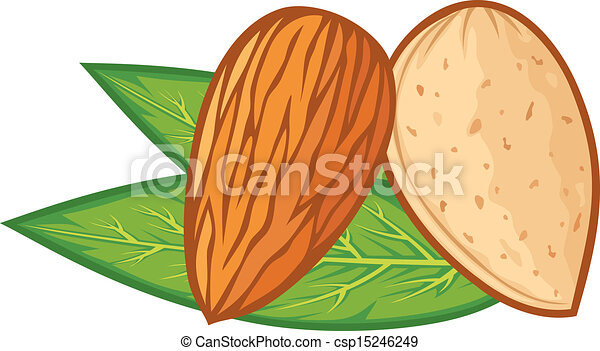almond with leaves (almond nut) - csp15246249