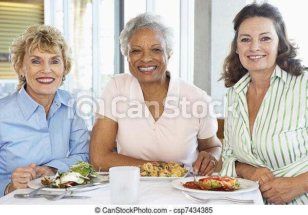 almuerzo, amigos, teniendo, juntos, restaurante - csp7434385