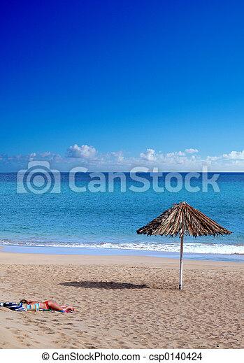 Alone in the beach - csp0140424
