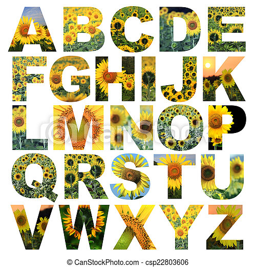 Alphabet a to z made from lotus flower picture stock photography alphabet a to z csp22803606 mightylinksfo Gallery