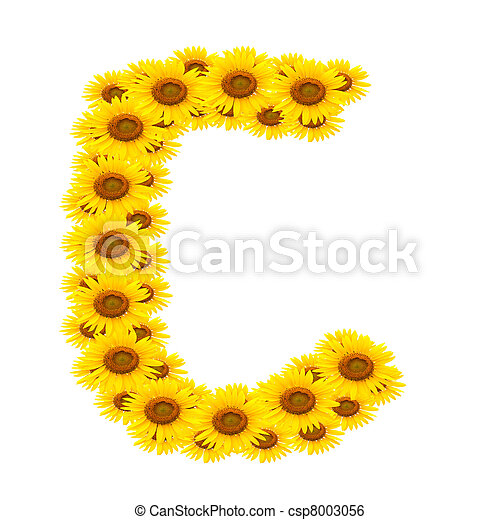 alphabet C , sunflower  - csp8003056