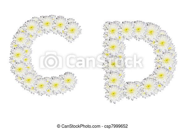 alphabet CD , White Flower isolated on white background  - csp7999652