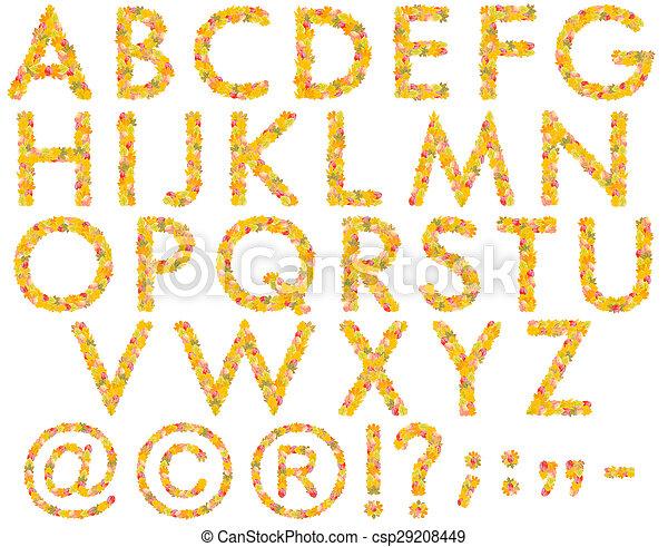 Alphabet from autumn leaves - csp29208449