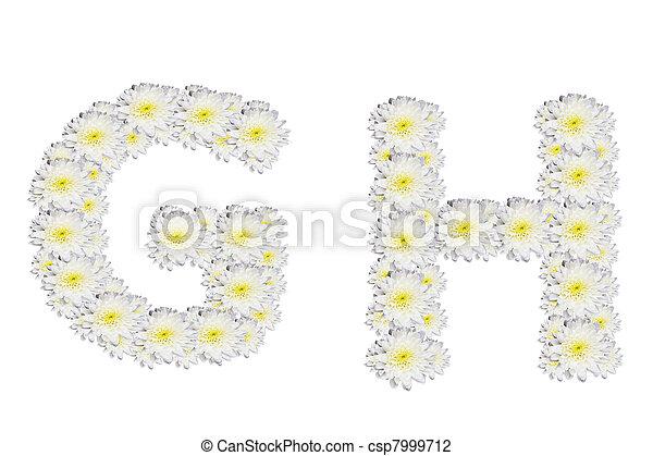 Alphabet GH, white flower - csp7999712